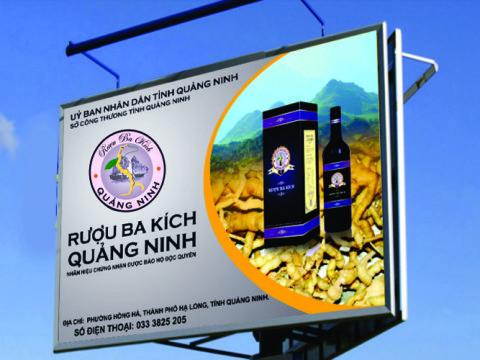 thiet ke bang hieu ruou ba kich Quang Ninh
